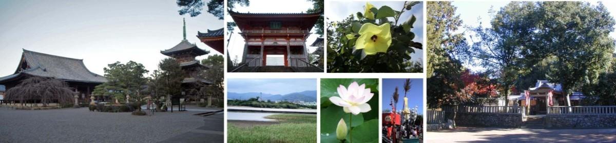 熊野古道  塩屋と日高